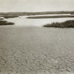 WTD 1362 Isle of Meadows, Fresh Kills, S.I.,N.Y. 5.21.1933