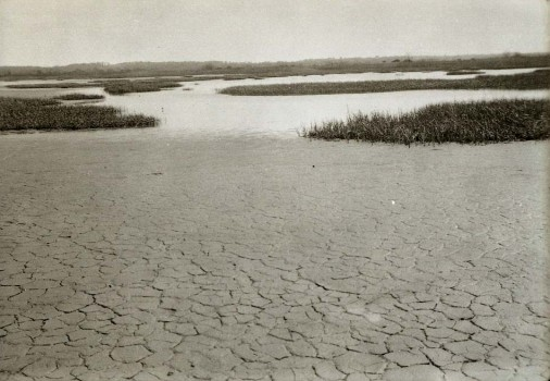 Isle of Meadows, Fresh Kills, 5.21.1933