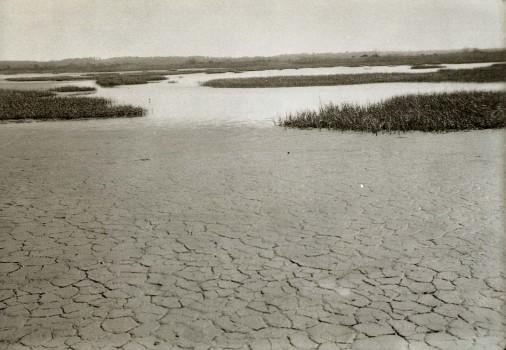 Isle of Meadows, Fresh Kills, 5.21.1933