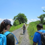 Freshkills Park Hiking