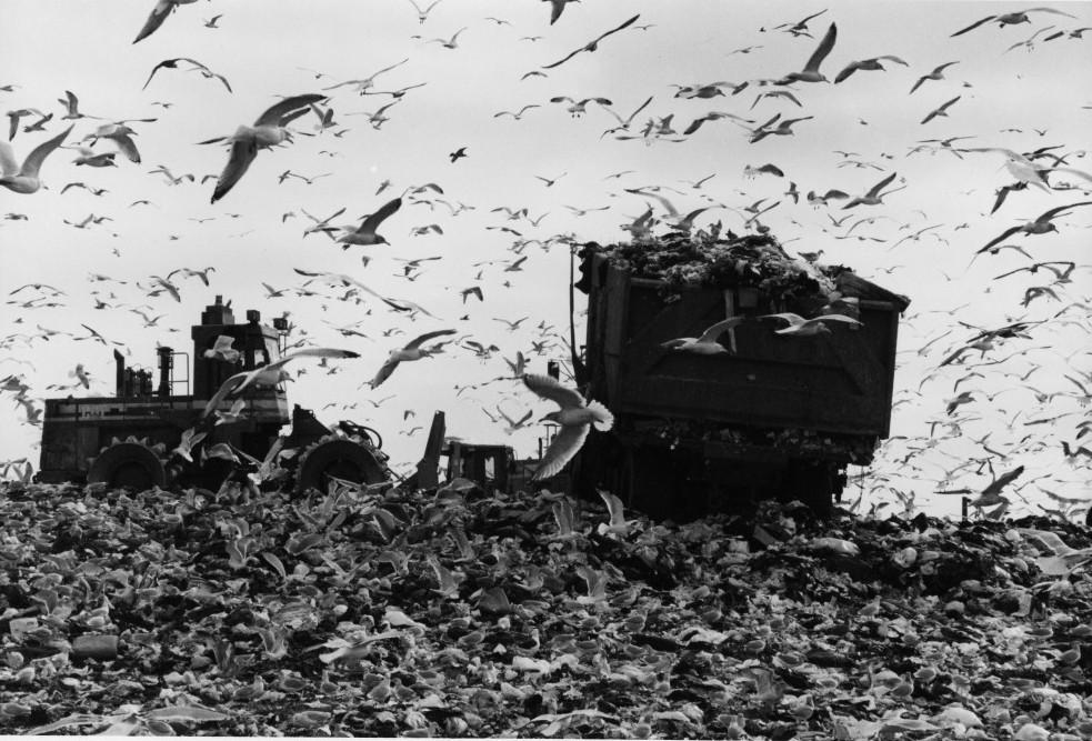 Fresh Kills Landfill