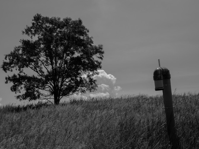 """Freshkills Park: Landscape in Motion"" Photography Exhibition"